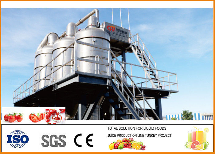 Small  Brix 36/38 and 28/30  Tomato Paste Processing Plant CFM-A-021-250-300