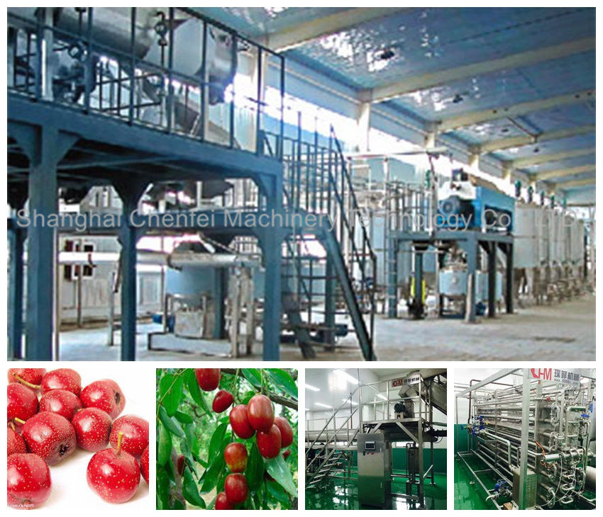 Automatic Beverage Processing Plant Machinery / Dates And Jujube Processing Line