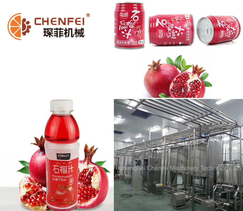 Guava Fruit Juice Processing Equipment SS304 Material CFM-B-03-26T Silver Color