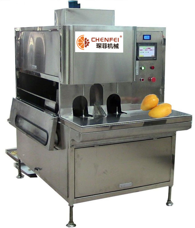 Compact Structure Mango Processing Line Paste Processing Line 5 Tons Per Day